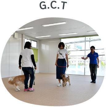 G.C.T